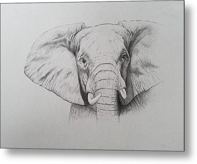 Elephant Metal Print by Ele Grafton