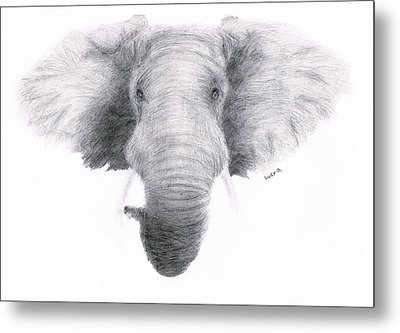 Elephant Metal Print by Lucy D
