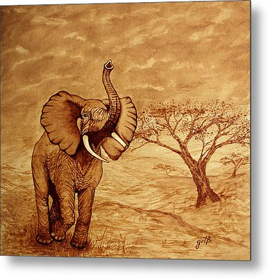 Elephant Majesty Original Coffee Painting Metal Print by Georgeta  Blanaru