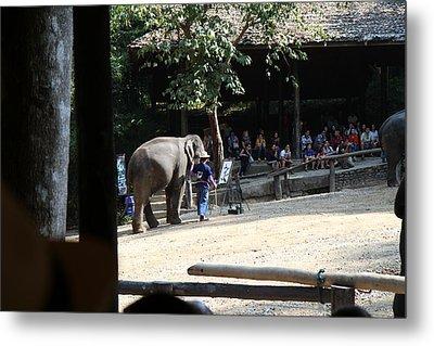 Elephant Show - Maesa Elephant Camp - Chiang Mai Thailand - 011342 Metal Print by DC Photographer