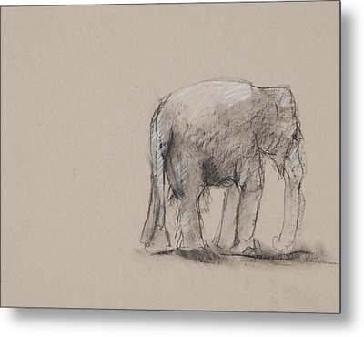 Elephant Charcoal Study #1 Metal Print