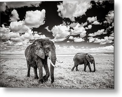 Elephants And Clouds Metal Print