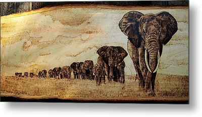Elephants Are Contagious Metal Print by Ciprian Macovei