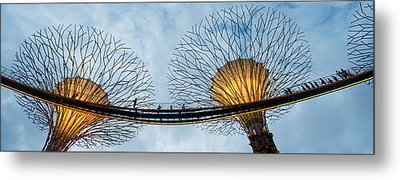Elevated Walkway Among Supertrees Metal Print by Panoramic Images