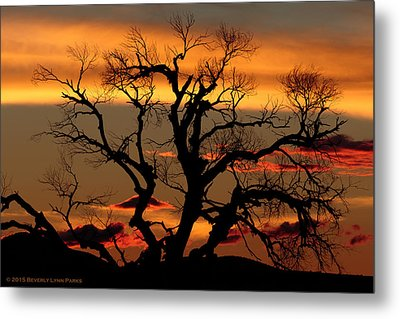 Metal Print featuring the photograph Elgin Sunset by Beverly Parks