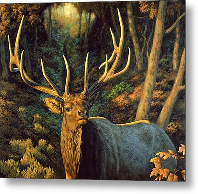 Elk Painting - Autumn Majesty Metal Print by Crista Forest