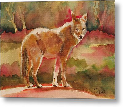 Elusive Visitor Metal Print by Pattie Wall