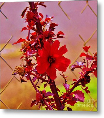 Emancipation Metal Print by Craig Wood