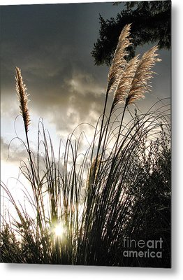 Embracing The Mystery Metal Print by Rory Sagner