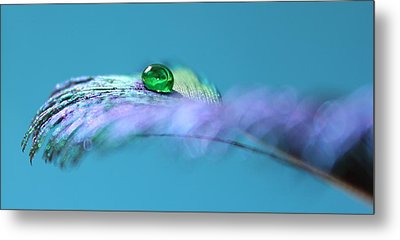 Emerald Peacock Metal Print
