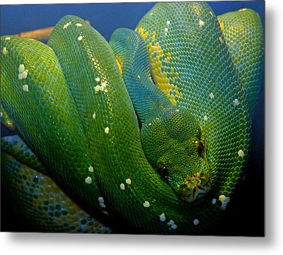 Emerald Trouble Metal Print