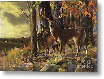 Eminence At The Forest Edge Metal Print by Rob Corsetti
