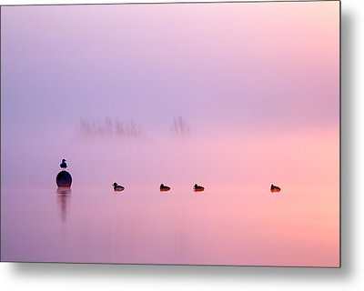 Empty Spaces 2 - Sunrise In The Mist Metal Print by Roeselien Raimond