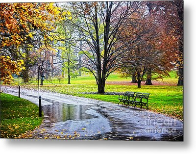 Empty Walkway On A Beautiful Rainy Autumn Day Metal Print by Nishanth Gopinathan
