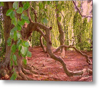 Metal Print featuring the photograph Enchanted by Becky Lupe