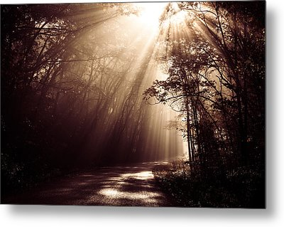 Enchanted Light Metal Print by Todd Klassy