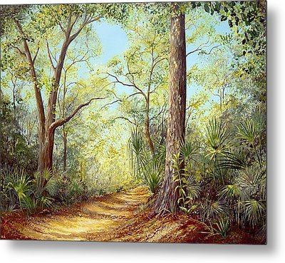 Enchanted Trail Metal Print
