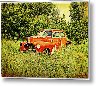 End Of The Line Metal Print by Dianne  Lacourciere