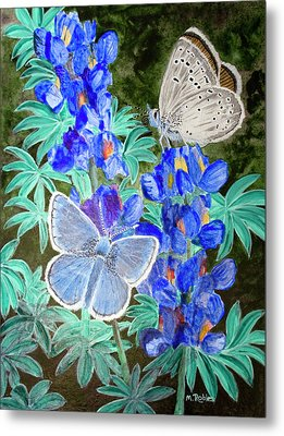 Endangered Mission Blue Butterfly Metal Print