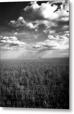 Endless Metal Print by Tom DiFrancesca