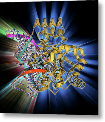 Endonuclease Iv Molecule Metal Print by Laguna Design