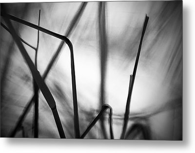 Metal Print featuring the photograph Energy by Arkady Kunysz