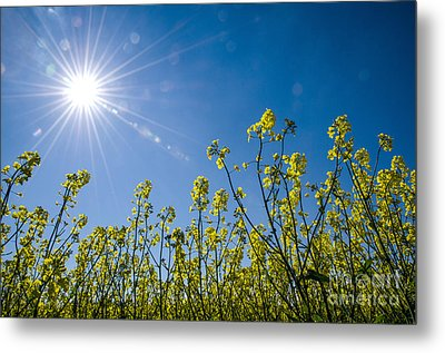 Metal Print featuring the photograph Energy by Kennerth and Birgitta Kullman