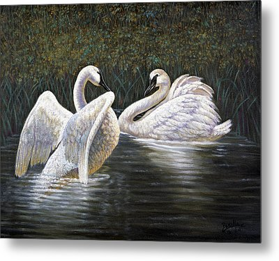 Enjoying The Trumpeter Swans Metal Print by Gregory Perillo