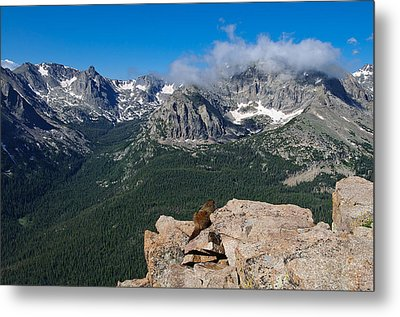 Metal Print featuring the photograph Enjoying The View by Tyson and Kathy Smith