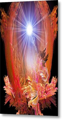 Enlightened One Metal Print by Michael Durst