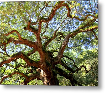 Entangled Beauty Metal Print