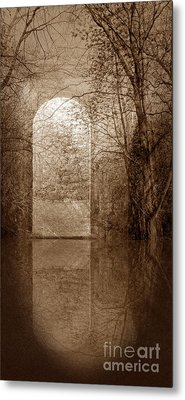 Entranced Metal Print by Liz  Alderdice