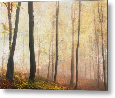 Equilibrium Of The Forest In The Mist Metal Print by Georgiana Romanovna
