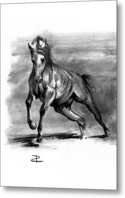 Metal Print featuring the drawing Equine IIi by Paul Davenport