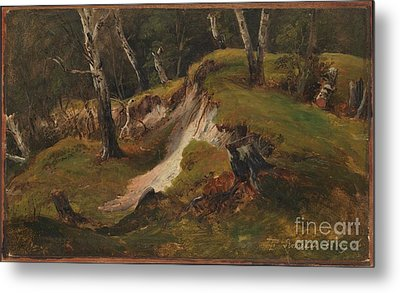 Escarpment With Tree Stumps Metal Print