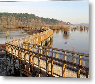 Metal Print featuring the photograph Estuary Boardwalk Trail by I'ina Van Lawick