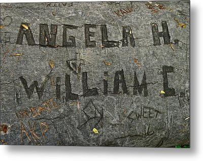 Etched In Wood Metal Print by Frozen in Time Fine Art Photography