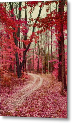 Ethereal Forest Path With Red Fall Colors Metal Print by Brooke T Ryan