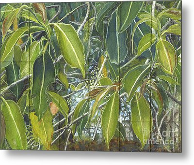 Euca - Leaves Section Metal Print