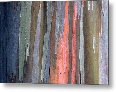 Eucalyptus Tree Bark Metal Print by Karon Melillo DeVega