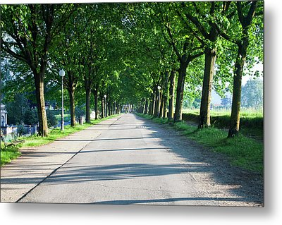 Europe, Italy, Lucca Metal Print by Terry Eggers