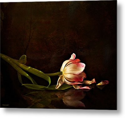 Even Though A Flower Fades Metal Print by Theresa Tahara
