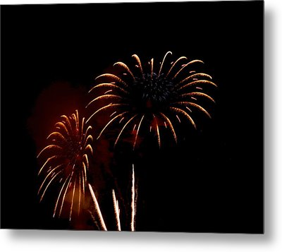 Metal Print featuring the photograph Evening Flowers by Linda Mishler