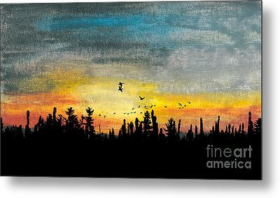Evening Freedom Metal Print