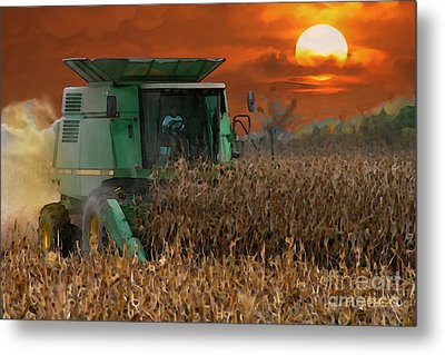 Evening Harvest Metal Print by E B Schmidt