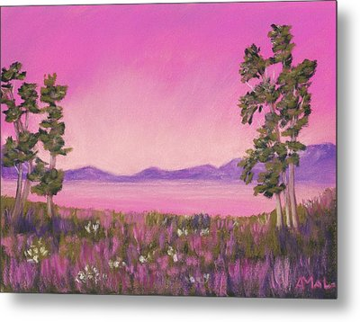 Evening In Pink Metal Print