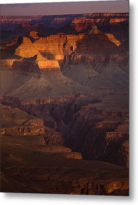Evening In The Canyon Metal Print by Andrew Soundarajan