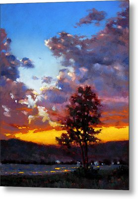 Evening In The Valley Metal Print by Dianna Ponting