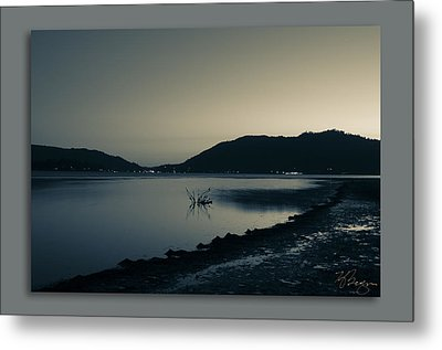 Metal Print featuring the photograph Evening by Kevin Bergen
