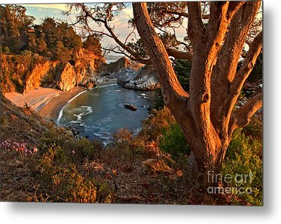 Evening Light At Pfeiffer Burns Metal Print by Adam Jewell
